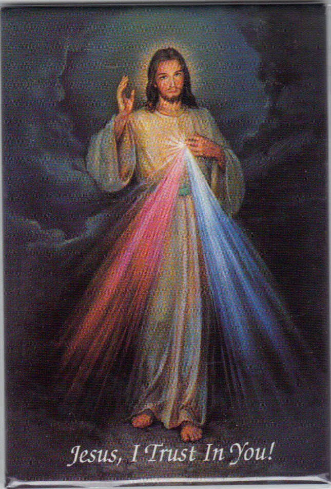 Image for Divine Mercy-Magnetic