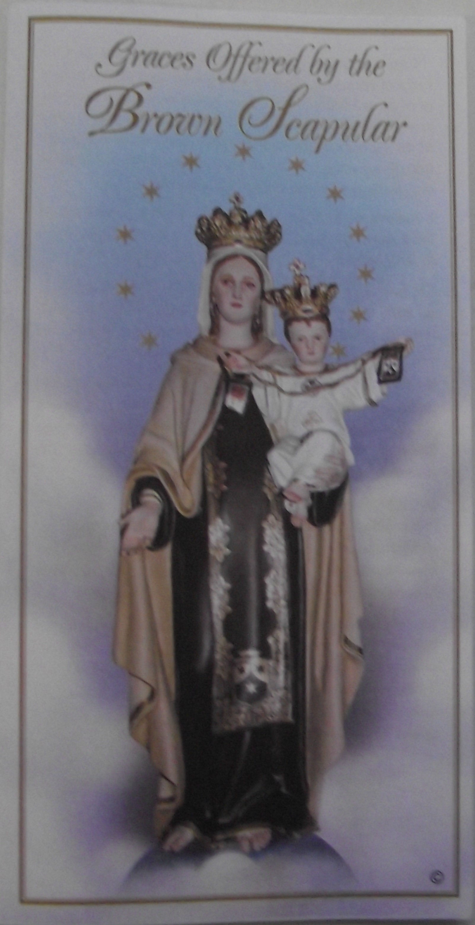 Image for Graces Offered by the Brown Scapular